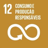 12 - Consumo e Produção Responsáveis