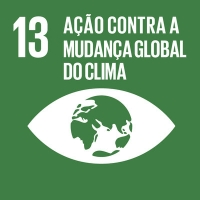 13 - Ação contra a Mudança Global do Clima